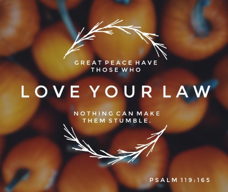 102417-Psalm-119-165-NoLogo